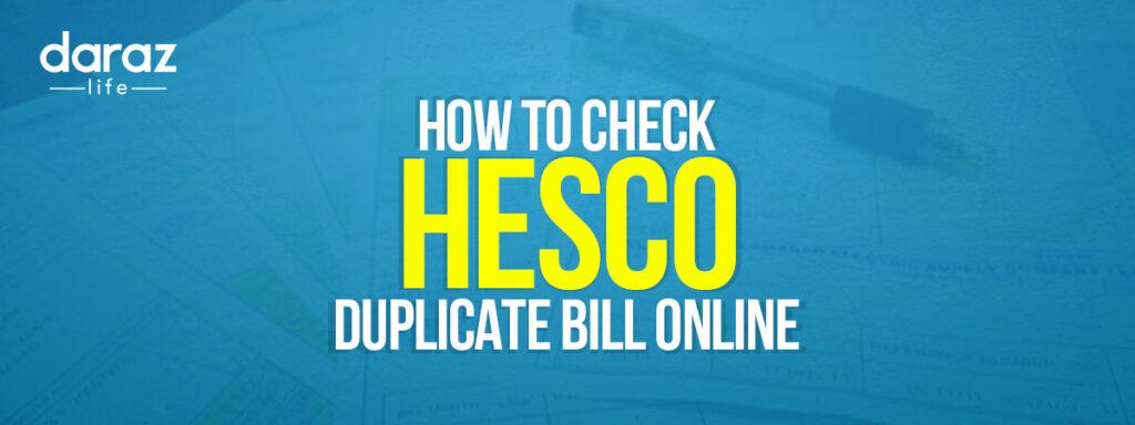 Check HESCO Duplicate Bill